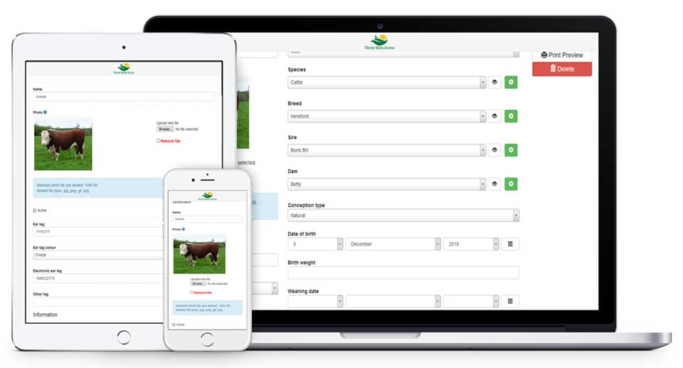 farmrexx cattle management software